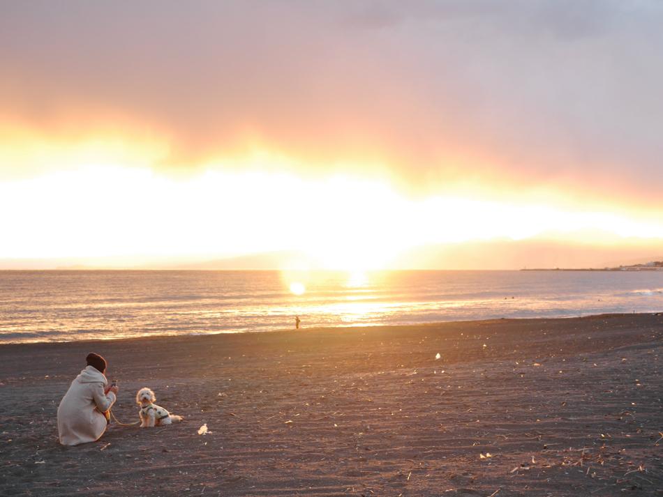 海を感じるアイテムに幻想的なサンセットまで湘南で休日を満喫!